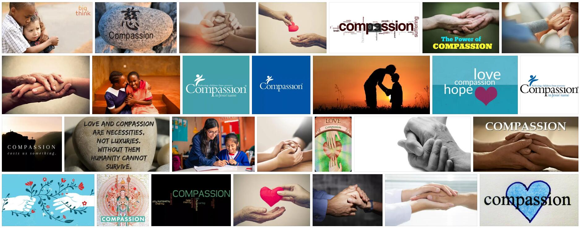 Meaning of Compassion in English