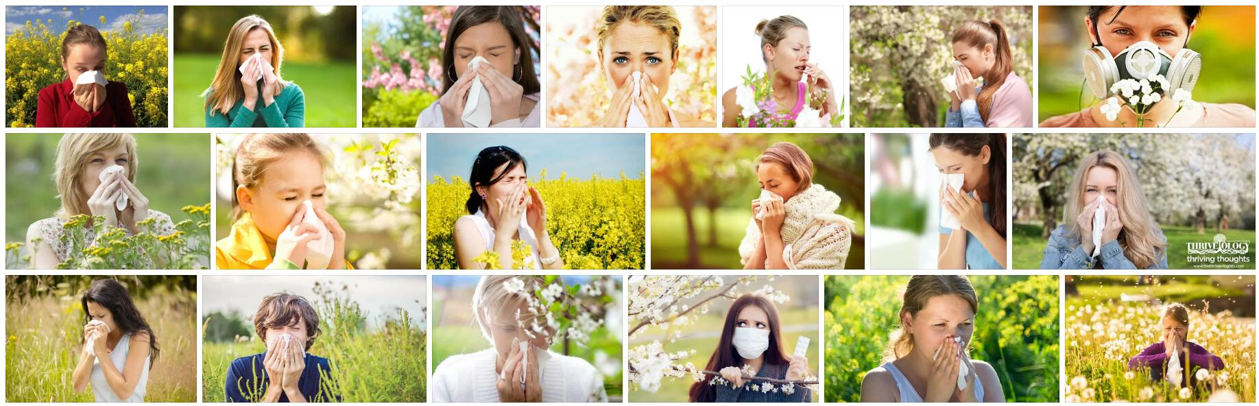 Meaning of Allergy in English