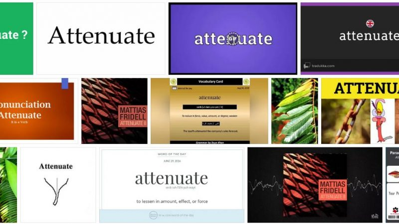 Meaning of Attenuate in English