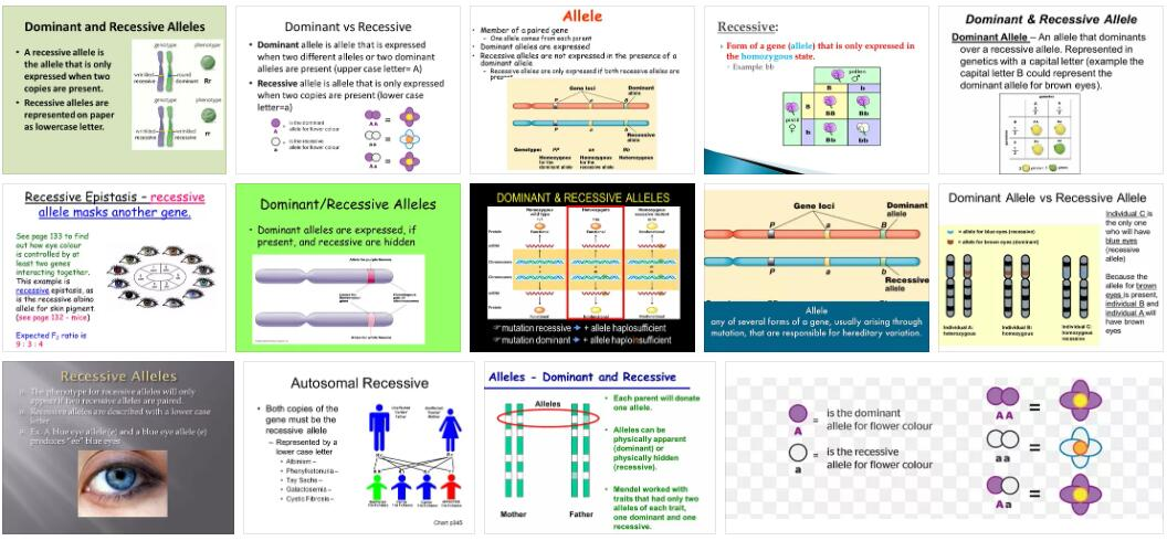 Meaning of Recessive Allele in English