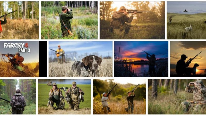 Meaning of Hunting in English