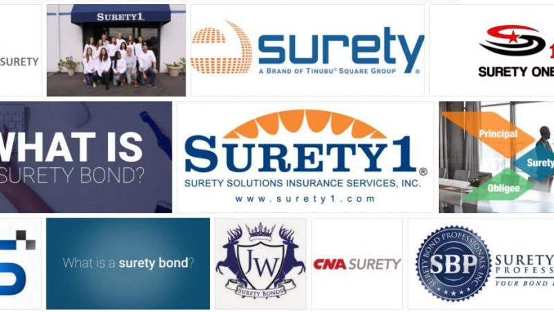 Meaning of Surety in English