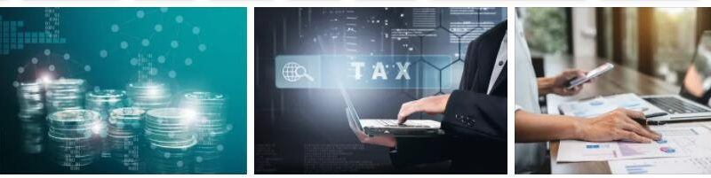 Meaning of Digital Tax in English