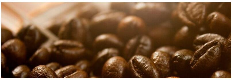 Meaning of JavaBeans in English
