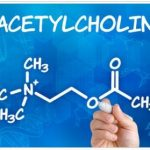 Meaning of Acute Cholinergic Syndrome in English